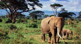 Sudáfrica consolida su turismo a base de 'bloggers'