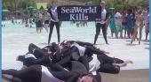 """""""SeaWorld mata"""""""