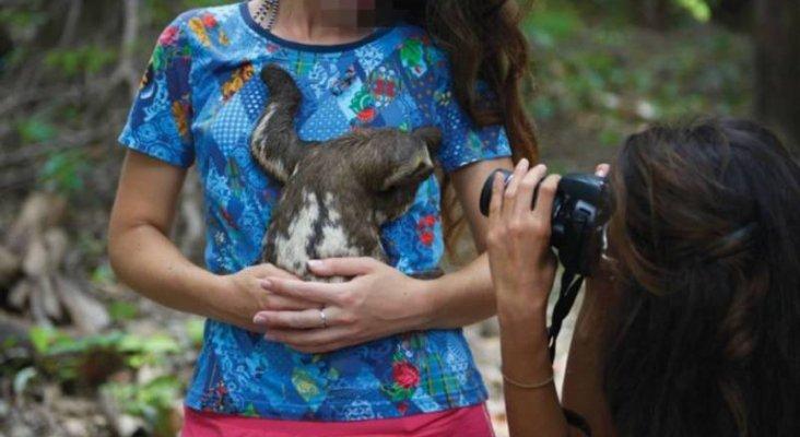 Una turista se hace una foto con un perezoso