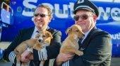 Tripulación de Southwest evacúa perros de Puerto Rico