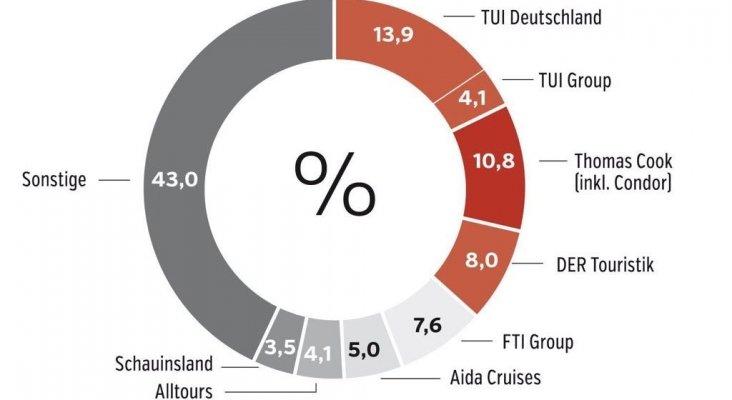 Reparto del mercado alemán. Fuente FVW