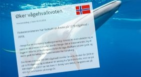 Noruega aumenta la caza de ballenas