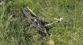 Atropellan a un grupo de turistas que practicaban ciclismo Imagen Marca