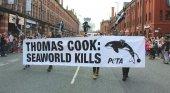 Las auditorías de Thomas Cook hunden a SeaWorld