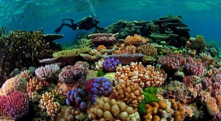 República Dominicana crea un mapa de alta resolución de arrecifes de coral