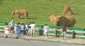 Fuga masiva de animales en un zoo de Cantabria