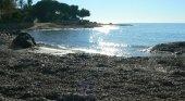 Arribazones en Alicante, una defensa natural de las playas
