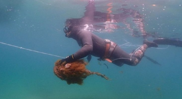 Voluntarios retiran 650 kilos de basura de una playa de Mallorca. Foto: Europa Press