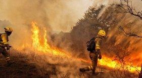 España registra 8.643,48 hectáreas quemadas en los cinco primeros meses del año. Foto: EFE