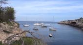 Mallorca Blue denuncia el anclaje de embarcaciones de recreo en campos de posidonia|Fotograma del vídeo de la denuncia