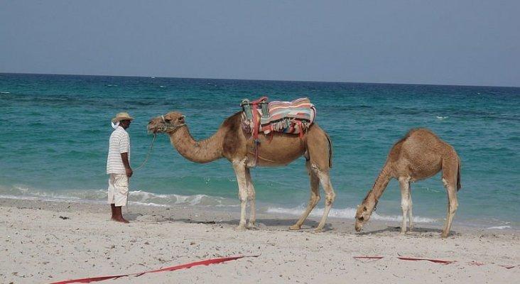Túnez no cumple las expectativas de Anex Tour