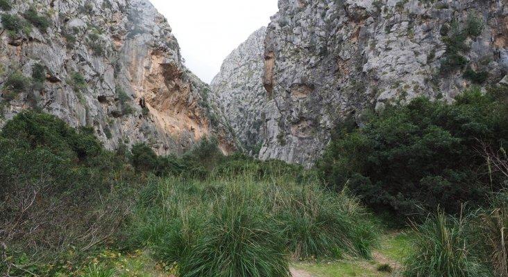 Rescatan en Mallorca a 20 excursionistas deshidratados