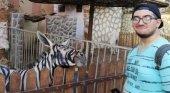 Denuncian a zoo egipcio por pintar a burros para hacerlos pasar por cebras