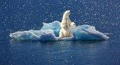Hapag-Lloyd defiende su imagen tras el disparo al oso en uno de sus cruceros