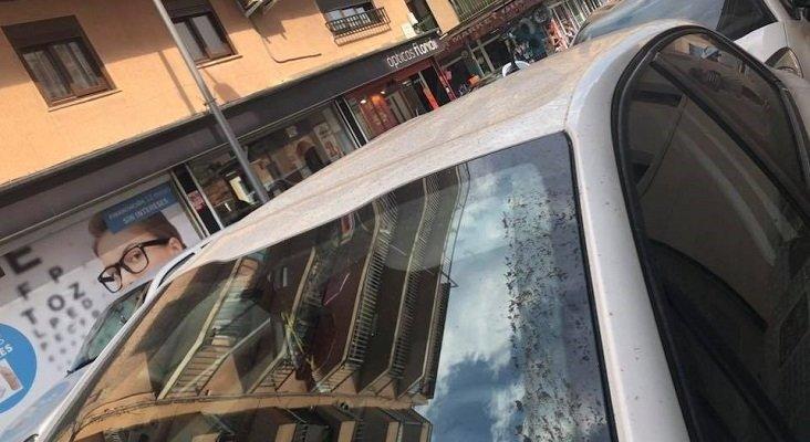 """¡Este turismo no lo queremos en Mallorca!""|Foto: Miryam Sampol Rodríguez"
