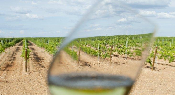 Las puertas del campo: Viaje por la ruta del vino de Rueda|Foto: Ruta del Vino de Rueda