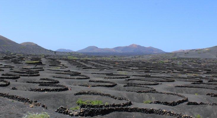 TUI Care y Futouris presentan proyecto para conservar cultivo tradicional de uva