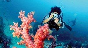 Caos en Tailandia entre los turistas para hacerse con una entrada a las islas Similan
