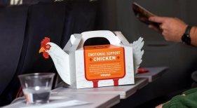 'Pollo frito de apoyo emocional' para los pasajeros de avión estresados Foto: Business Insider