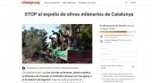 Los turistas dejan sin olivos a pueblo de Tarragona