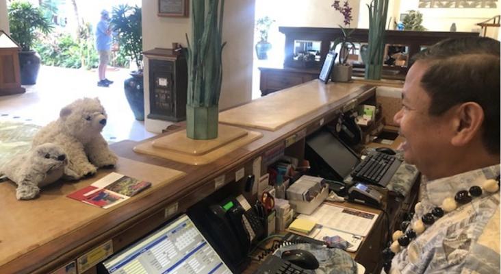 Olvida su osito de peluche en un hotel y obtiene una respuesta inolvidable|Foto: Grand Hyatt Kauai Resort and Spa - Anna vía Twitter