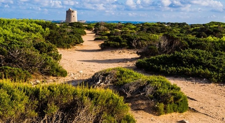 El 'sexo' está acabando con las dunas de es Cavallet (Ibiza) | Foto: playasbaleares.com