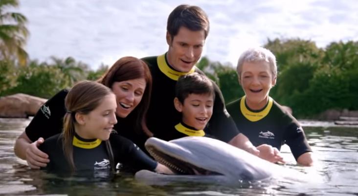 Abre el primer parque acuático dirigido a personas con autismo | Foto: discoverycove.com