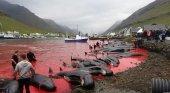 La matanza de cientos de cetáceos en las islas Feroe: ¿tradición o barbarie? | Foto: Sea Shepherd