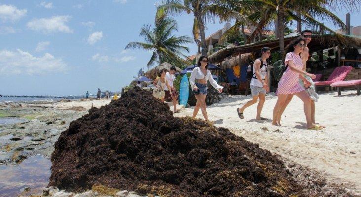 El presidente de México descarta usar el Fondo de Turismo para luchar contra el sargazo   Foto: Diario de Yucatán