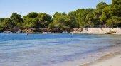 Un bosque costero de Ibiza, en peligro de ser urbanizado | Foto: white-ibiza.com