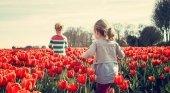Este verano un 70% de los holandeses viajará por vacaciones