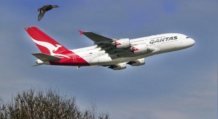 La 'joint venture' de Qantas y American Airlines ya no será monopolio