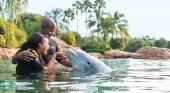 Virgin Holidays no venderá entradas para atracciones con cetáceos cautivos | Foto: TravelMole