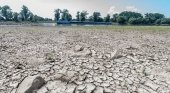 Los cruceros fluviales, principales afectados de la sequía en el Danubio | Foto: BR24