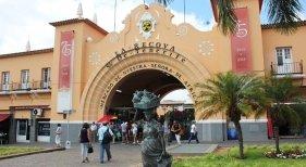 Nace la Federación de Mercados de Canarias | Foto: la-recova.com