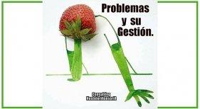 Problemas y su gestión