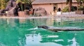 22.000 personas compran un zoológico para liberar a sus animales | Foto: Rewild vía La Vanguardia