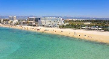 """Brainstorming internacional para """"prueba piloto muy potente"""" en Playa de Palma"""