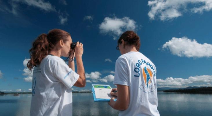 La ULL estudia los efectos del cambio climático en las especies costeras de Tenerife | Foto: Loro Parque Fundación