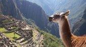 Nuevas limitaciones al acceso a Machu Picchu