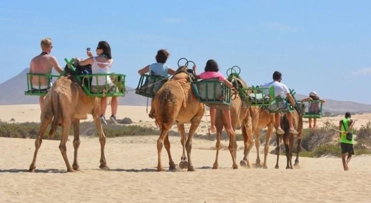 """Canarias desarrolla su propio """"Booking"""" para canalizar toda la oferta turística"""
