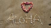 El 65% de los hawaianos no quiere que los turistas vuelvan a sus islas
