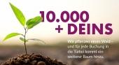 Bentour contribuirá a la reforestación en Turquía tras los incendios