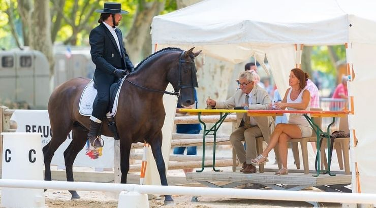 Doma clásica en Andalucía