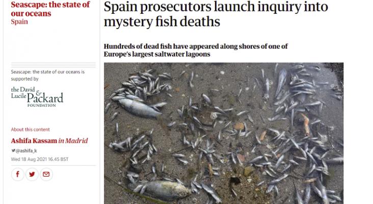 Los medios internacionales se hacen eco del desastre ambiental del Mar Menor