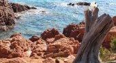 Isla en el Mar Rojo