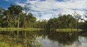 Parque natural de Chitwan